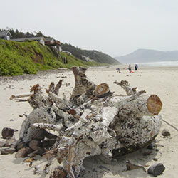 2012 Oregon Coast Photo